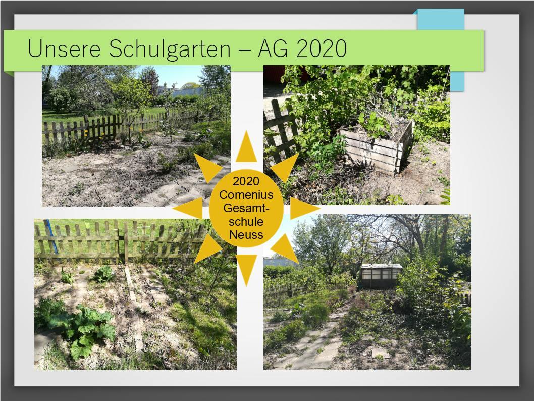 Schulgarten_ComeniusGesamtschuleNeuss_1
