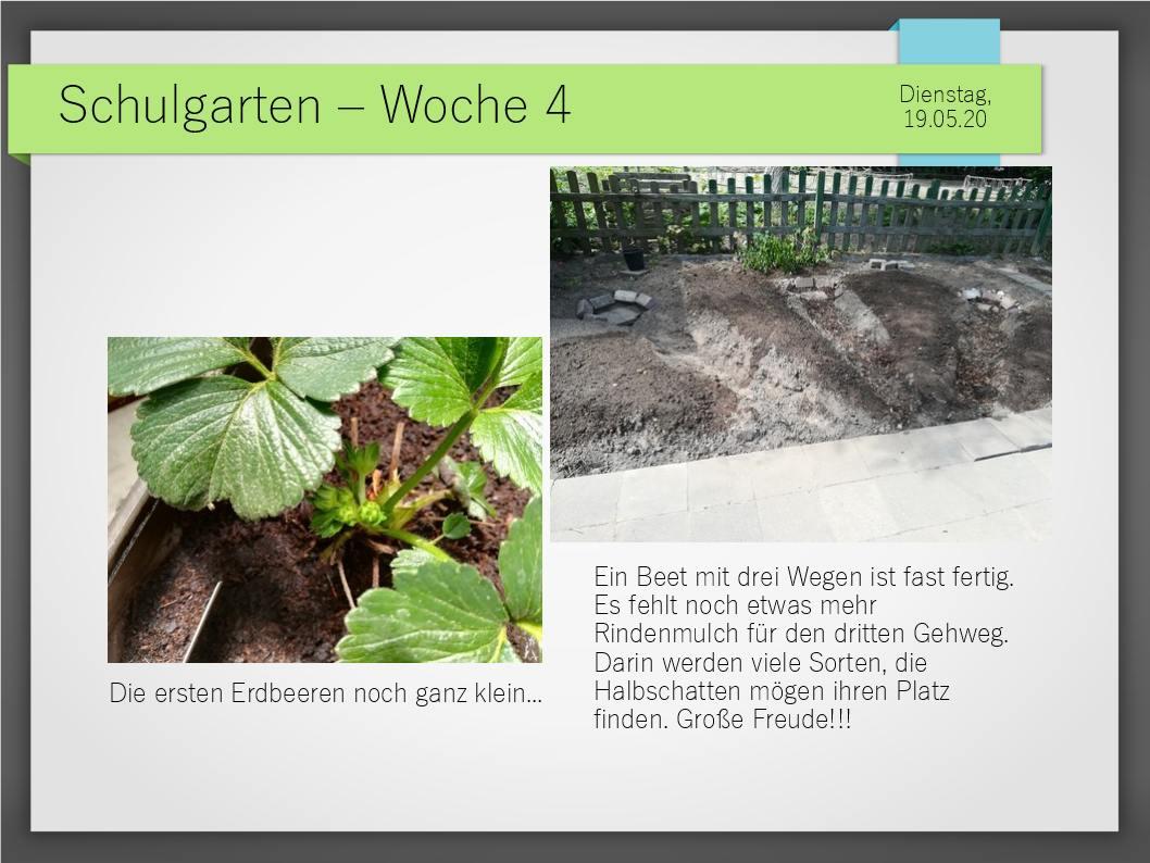 Schulgarten_ComeniusGesamtschuleNeuss_10