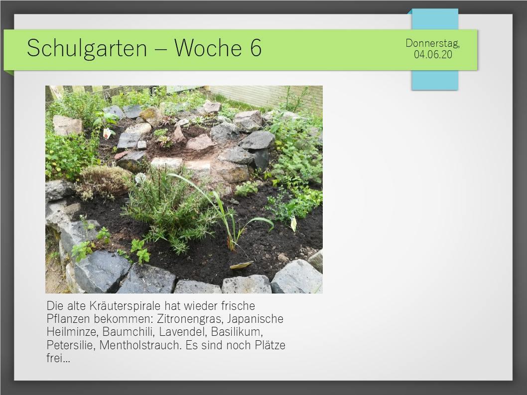 Schulgarten_ComeniusGesamtschuleNeuss_15-1