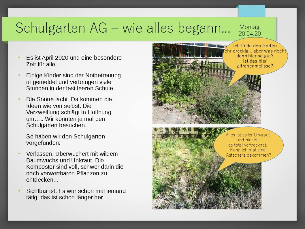 Schulgarten_ComeniusGesamtschuleNeuss_2