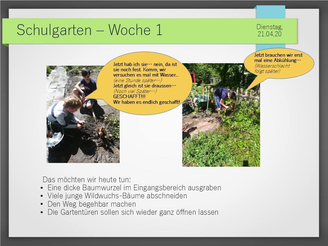 Schulgarten_ComeniusGesamtschuleNeuss_3