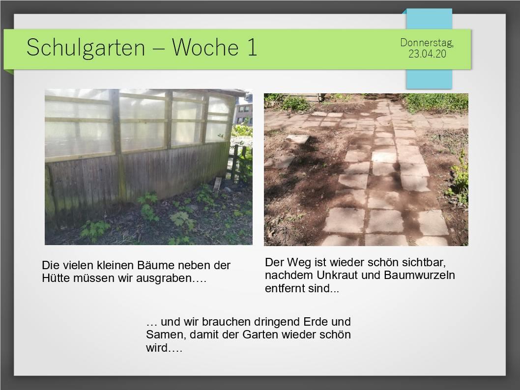 Schulgarten_ComeniusGesamtschuleNeuss_4