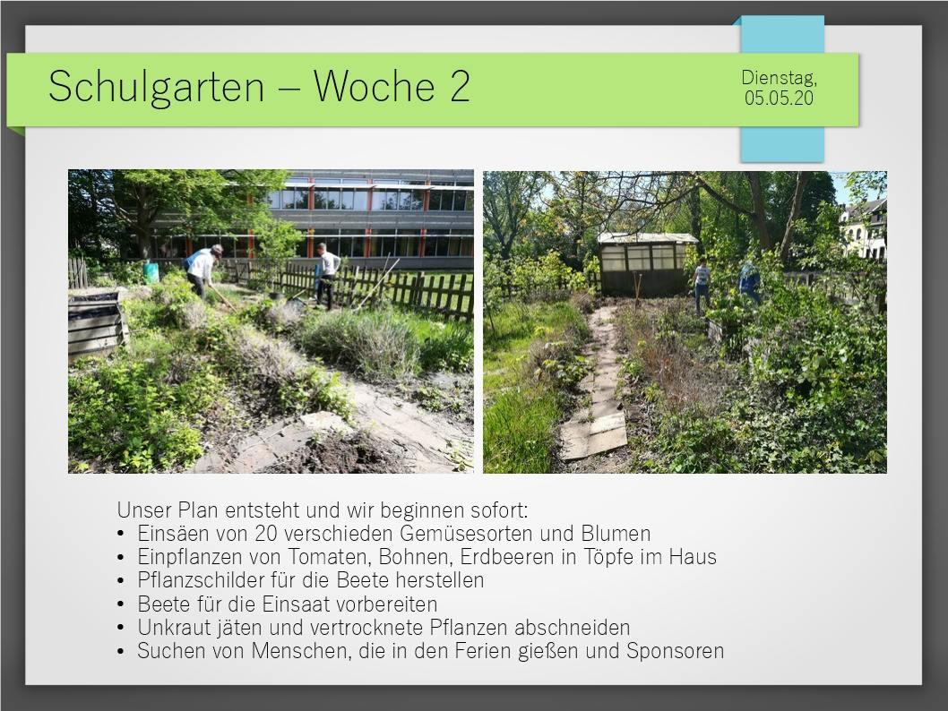 Schulgarten_ComeniusGesamtschuleNeuss_5