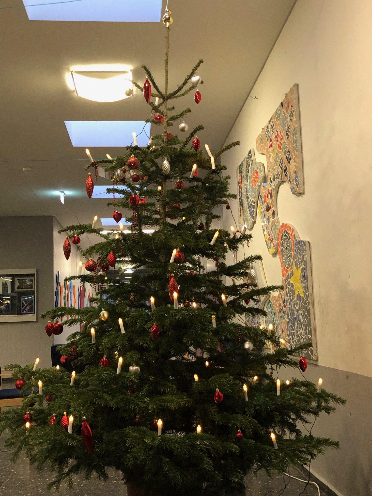 Die Comenius-Gesamtschule wünscht allen ein frohes Weihnachtsfest und einen guten Start ins Jahr 2020.